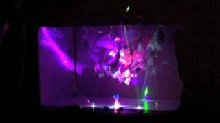 Swanlights - Radio City Music Hall