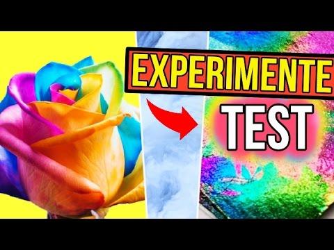 3 SKURRILE EXPERIMENTE im TEST! Rainbow Papier, bunte Rosen & Wolken Seife?