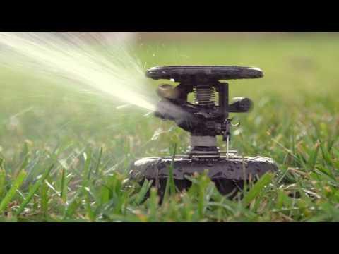 Maxi Paw Popup Sprinkler