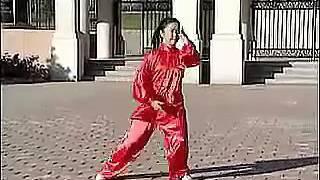 108 Traditional Yang Style Tai Chi Demonstration