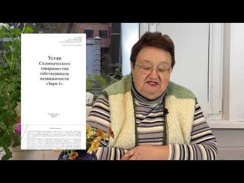 Отчёт ревизионной комиссии