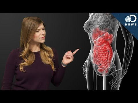 Do You Need To Clean Your Colon?
