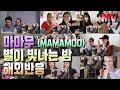 마마무 - 별이 빛나는 밤 M/V 해외반응 (MAMAMOO - Starry Night) reaction
