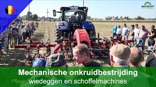 Mechanische onkruidbestrijding – Demonstratie van de nieuwe generatie wiedeggen en schoffelmachines