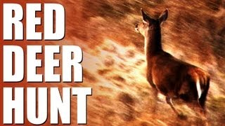 Fieldsports Britain : Stalking red deer + high-octane ratting with terriers (episode 177)