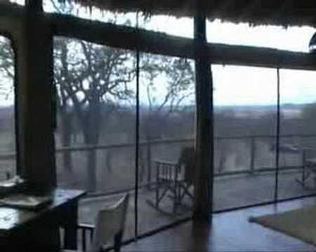 Lodge Tarangire Treetops