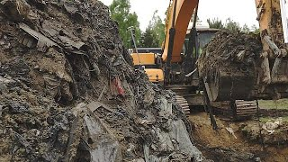 Ученые ЕС нашли в мусоре золотое зерно