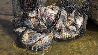Отчет о рыбалке озеро бисерово