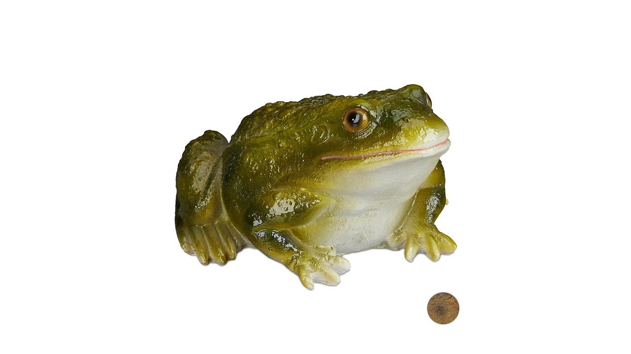 Video von: Gartenfigur Frosch Kunststein