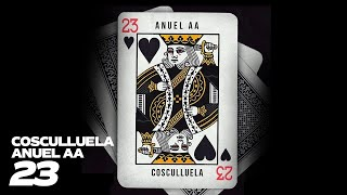 23 (Letra) - Cosculluela feat. Anuel AA (Video)