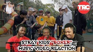 "Stray Kids ""Boxer"" (Street Ver.) Music Video Reaction"
