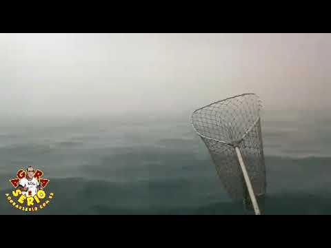 Pescadores de Juquitiba passa um cagaço em Alto Mar