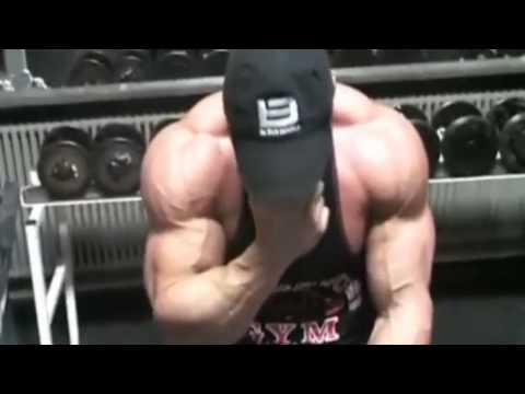 Les muscles du tournant de la tête