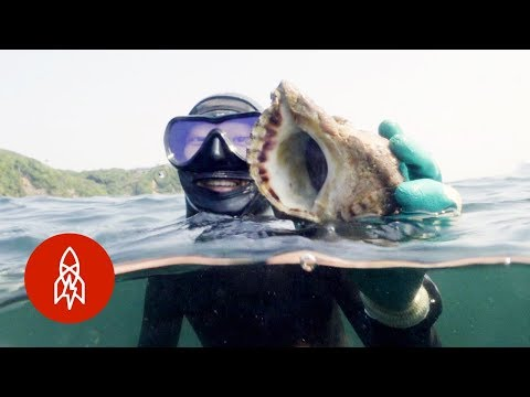 Freediving for Pearls in Japan