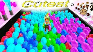 Cutest Ever !!!  Roblox Let's Play Crazy Random Fun Video Games with Cookie Swirl C