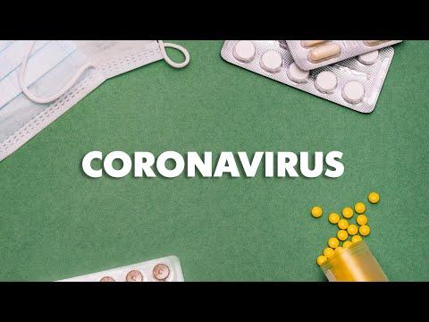 Papilloma virus palato duro