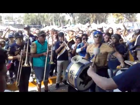 """""""CAR´sC - 18 años Rebel"""" Barra: La Rebel • Club: Pumas"""