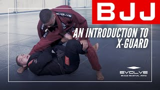 BJJ | An Introduction To X Guard