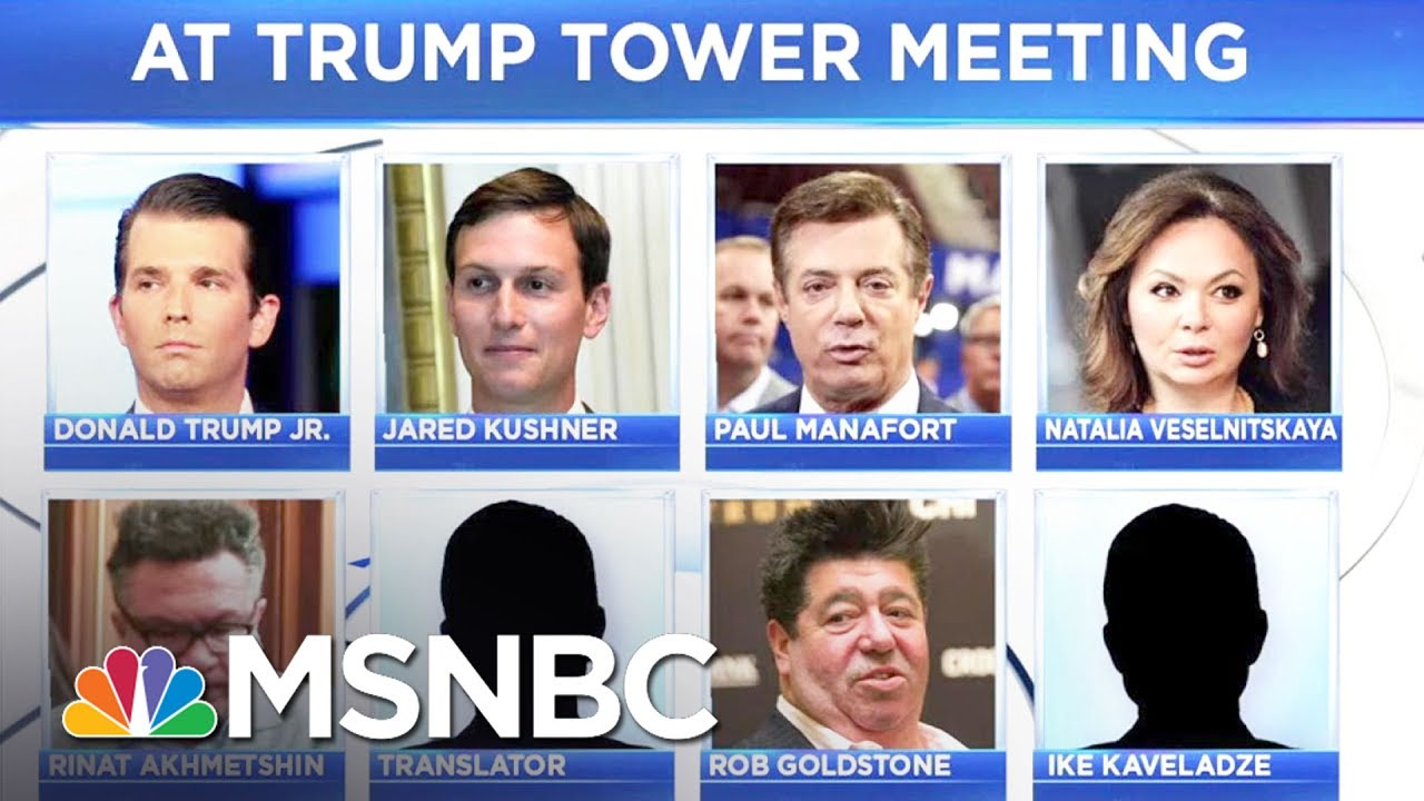 Eighth Person Identified At Trump Tower Meeting | MSNBC thumbnail