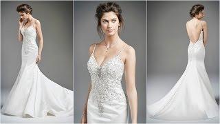 Mermaid Wedding Gowns | Low Back Wedding Dresses | Wedding Gown Designs | Wedding Dresses | WD22