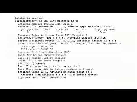CCNA 200-301 Video Practice Exam 2: OSPF - YouTube