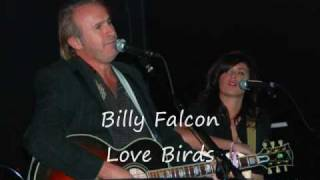 Billy Falcon Love Birds