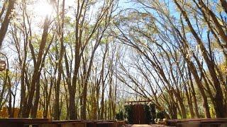 Florida Rustic Barn Weddings - Prairie Glenn Barn