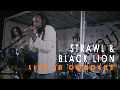 Strawl & Black Lion - African Story [De Kaaij Nijmegen 2017]...