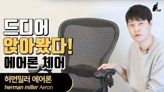 [자왕] Herman Miller Aeron 리뷰