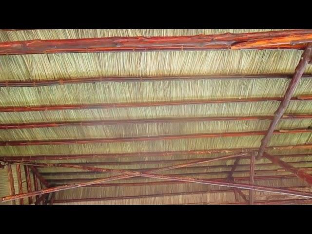 Cách lợp lá cỏ tranh lá tranh lợp nhà,lá tranh chống nóng