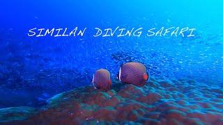 癒しの海の水中映像1時間 No.7 🐋Underwater video of healing sea 1 hour No.1  🦈Similan Cruise No,7 (作業用BGV)🏝GoPro