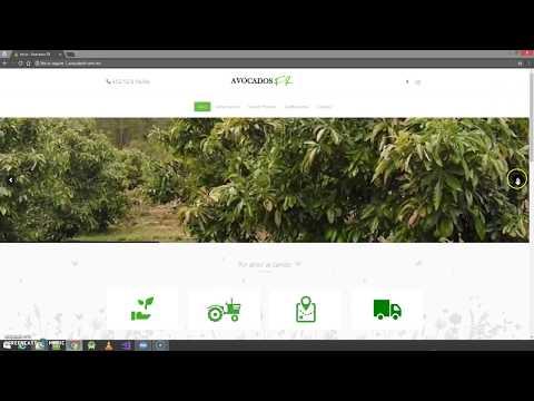 Portafolio de página web AvocadosFR