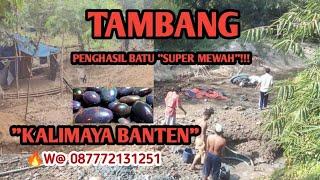 HORROR!!!TAMBANG PENCARIAN BATU KALIMAYA