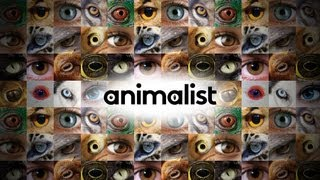 Welcome to Animalist!