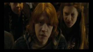 What If It All Means Something (Ron/Hermione)