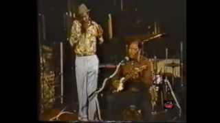 Harmonica Slim with Boogie Bill Webb 1991 - Live video