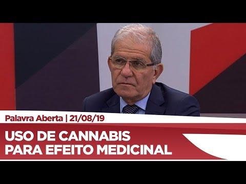 Chico D'Ângelo defende o uso medicinal da cannabis