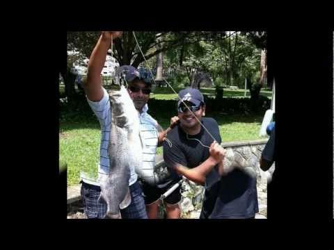 Team Fish Hunters @ Pasir Ris Fishing Pond