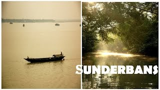 Life in Sundarbans