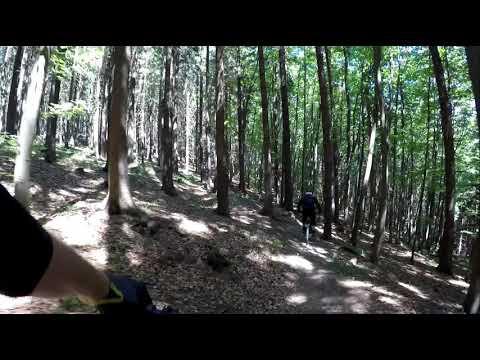 <!--:cs-->Bikepark Kyčerka 2019 nový trail<!--:-->
