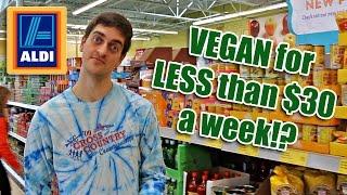 Shopping VEGAN on $30 a week: Day 1 of 8