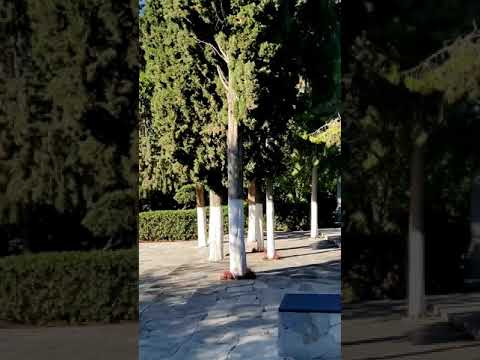 "VR-Park A.I. – Statues identification in ""Pedion Areos"" park (test video 3 – in beta)"