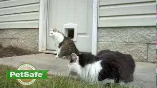 PetSafe Electronic SmartDoor Automatic Dog and Cat Door