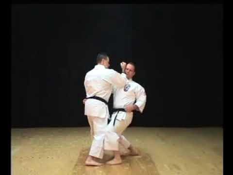 Isshin-ryu Naihanchi Kata & Bunkai by Michael Calandra 8th Dan