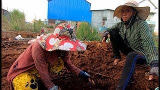 Ra xem hai Chị người Việt LƯỢM VE CHAI - Hương Vị Đồng Quê - Lâm Đồng Nắng Gió Và Hoa
