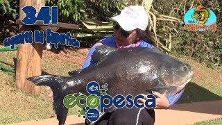 Programa Fishingtur na Tv 341 - Pesqueiro Eco Pesca