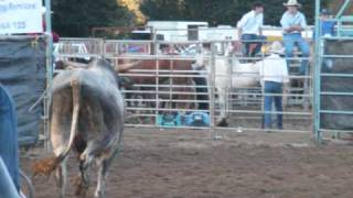 preview picture of video 'Images of Natwash - AUSTRALIA ..... TUMUT Festival Rodeo 2011'