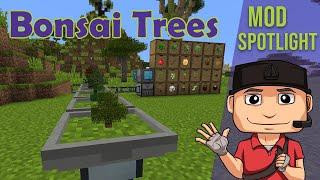 bonsai pot minecraft - Thủ thuật máy tính - Chia sẽ kinh nghiệm sử