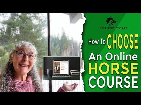 How To Choose An Online Horse Course I Online Liberty I Dressage ...