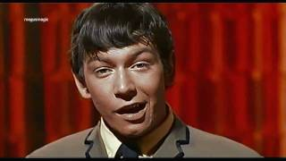 The Animals - Around & Around (1964) HD/widescreen ♫♥50 YEARS & counting